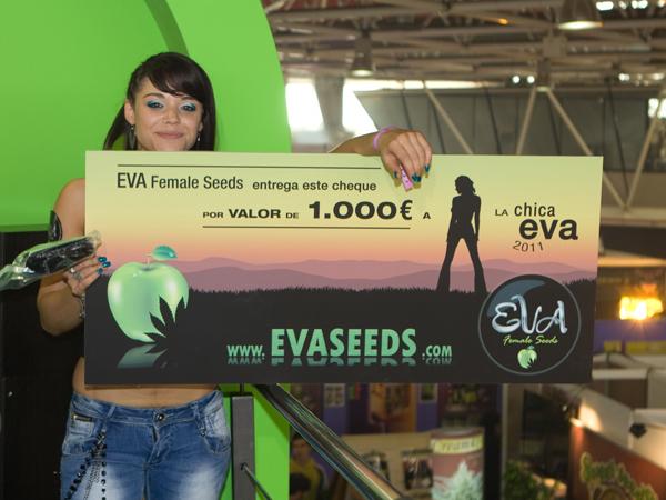 evafs-254-194